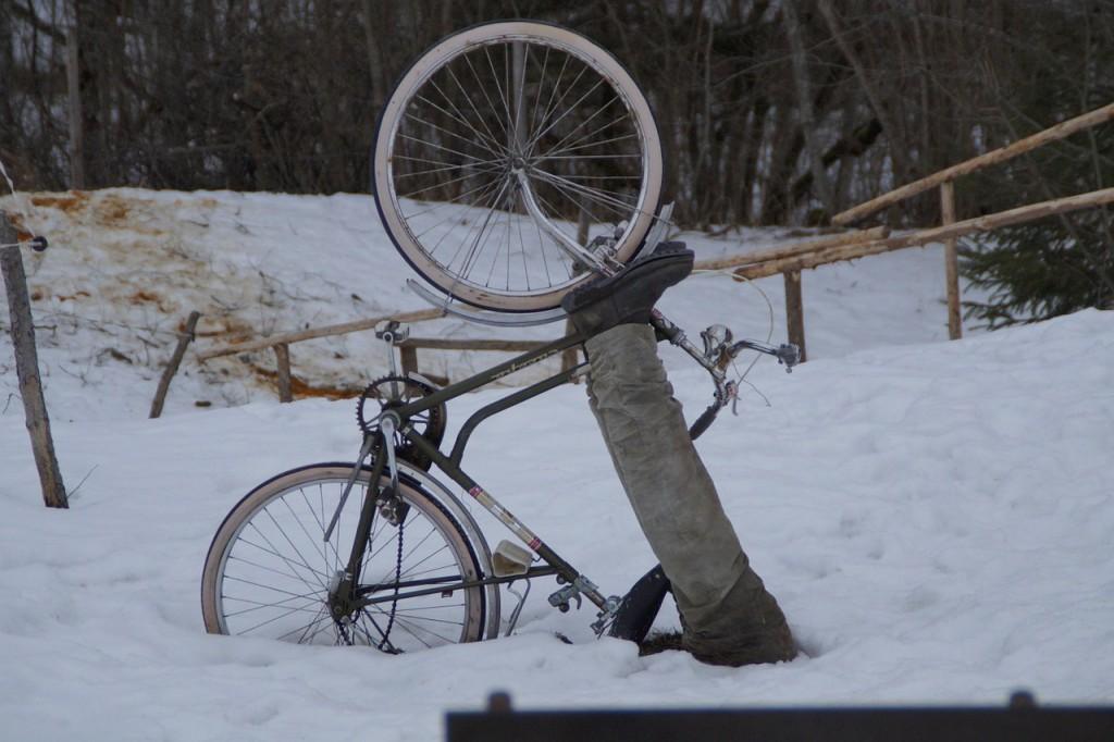 bike-239882_1280