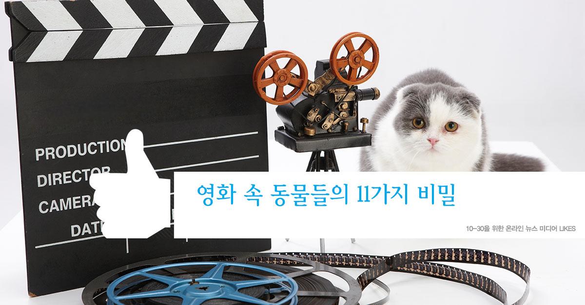 영화 속 동물들의 11가지 비밀