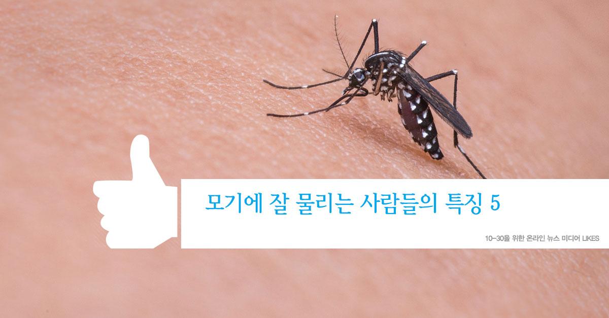 모기에 잘 물리는 사람들의 특징 5