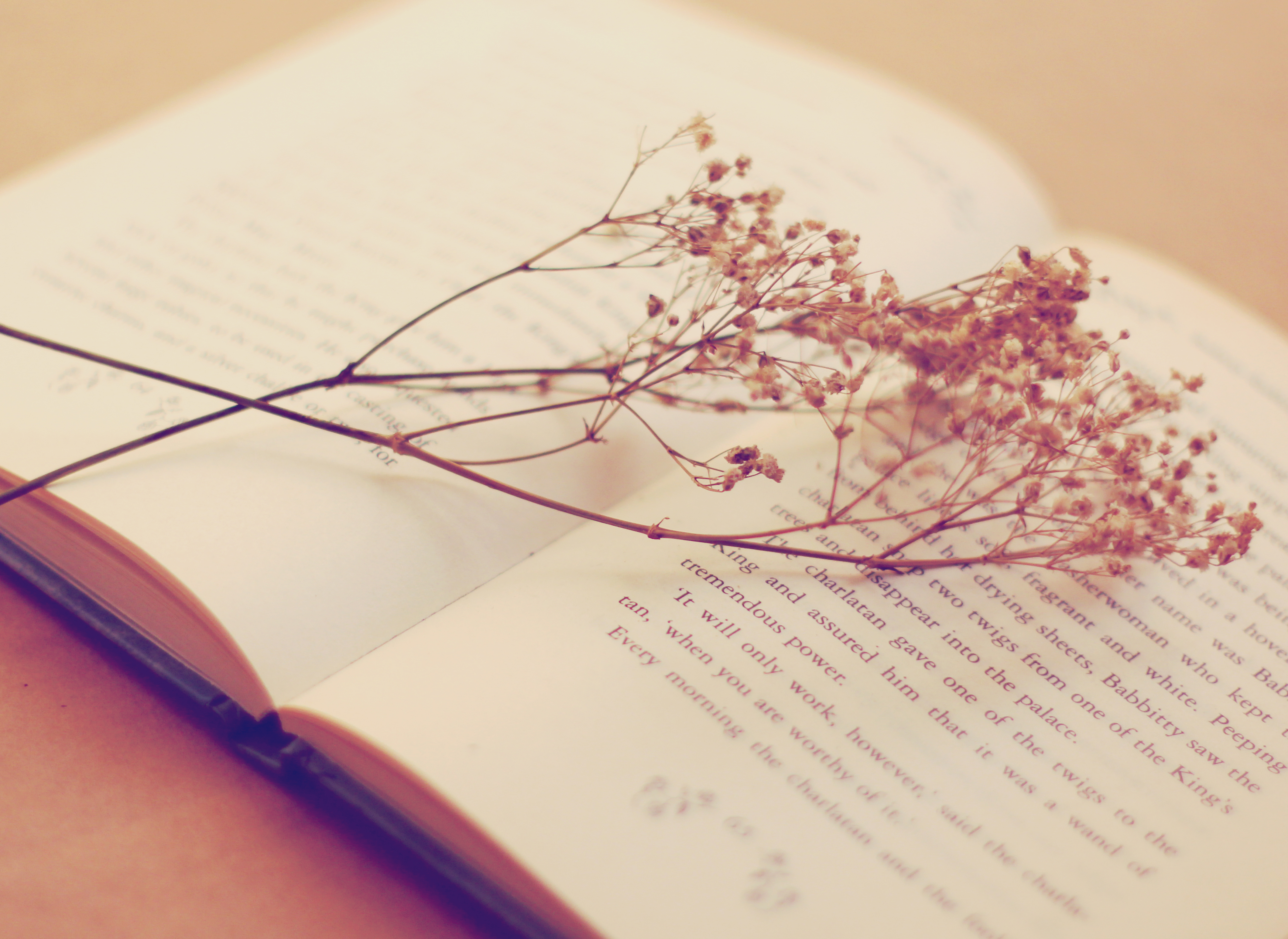 Old book with dried flowers, retro filter effect